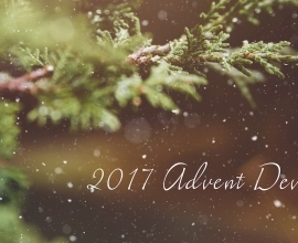 Advent 2017: Wednesday, December 13