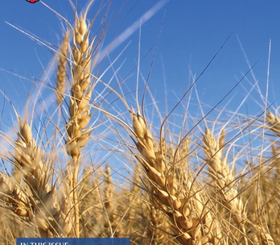 Seed & Harvest – Fall 2015
