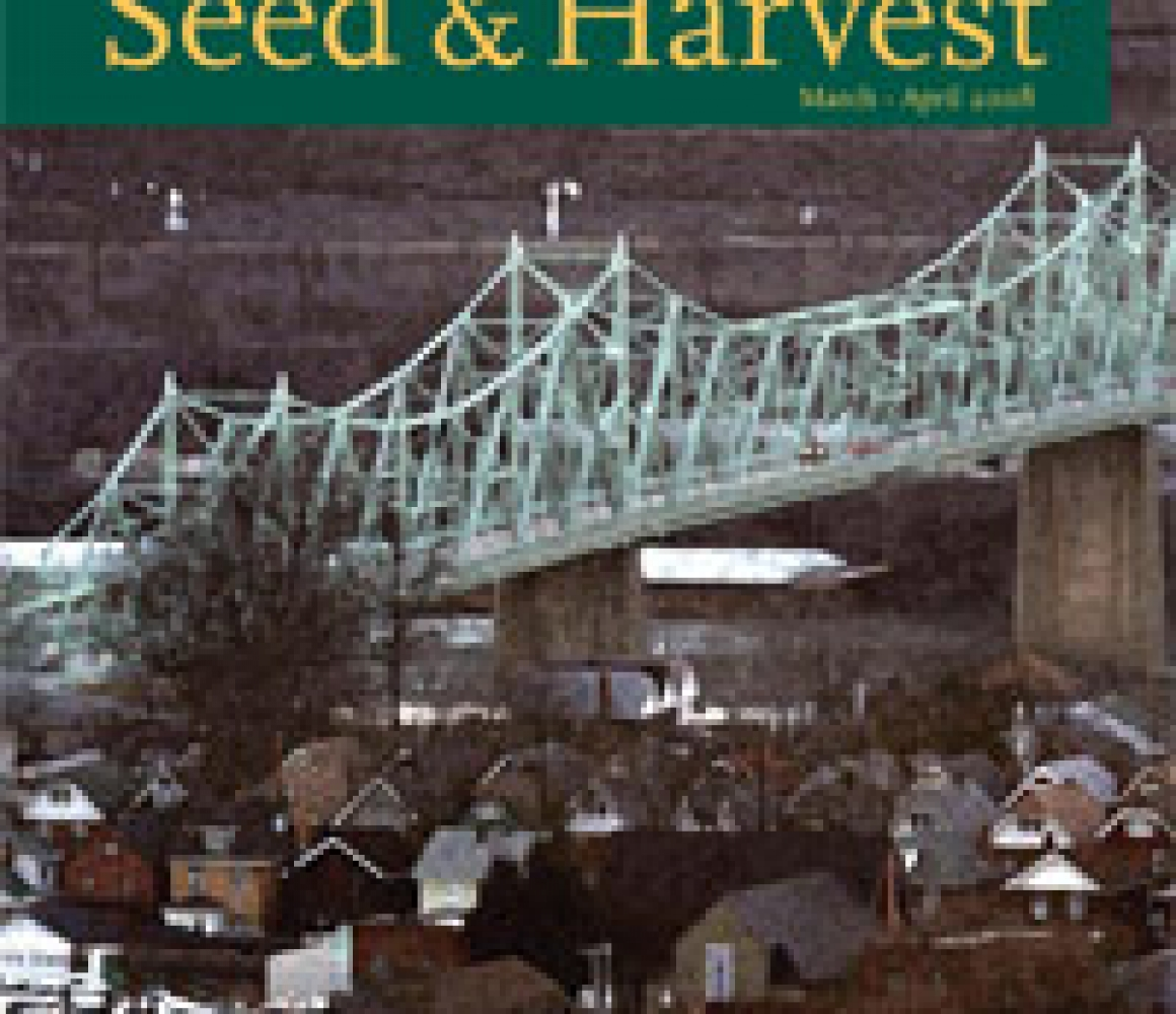 Seed & Harvest – March, April 2008