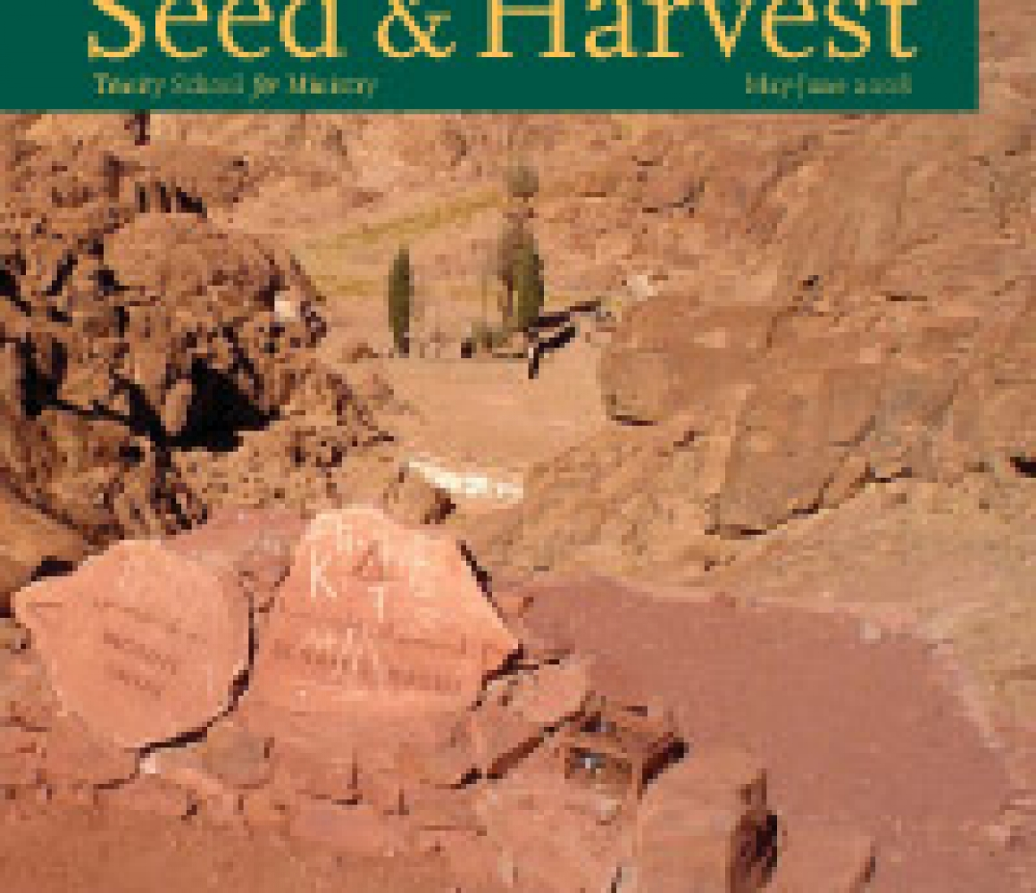 Seed & Harvest – May, June 2008