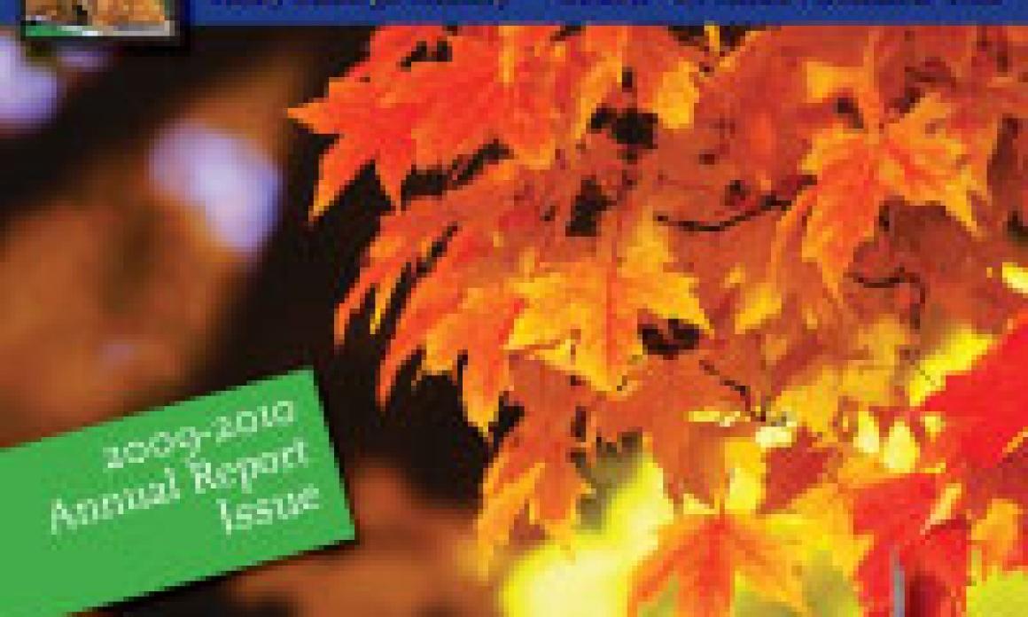 Seed & Harvest – October to December 2010